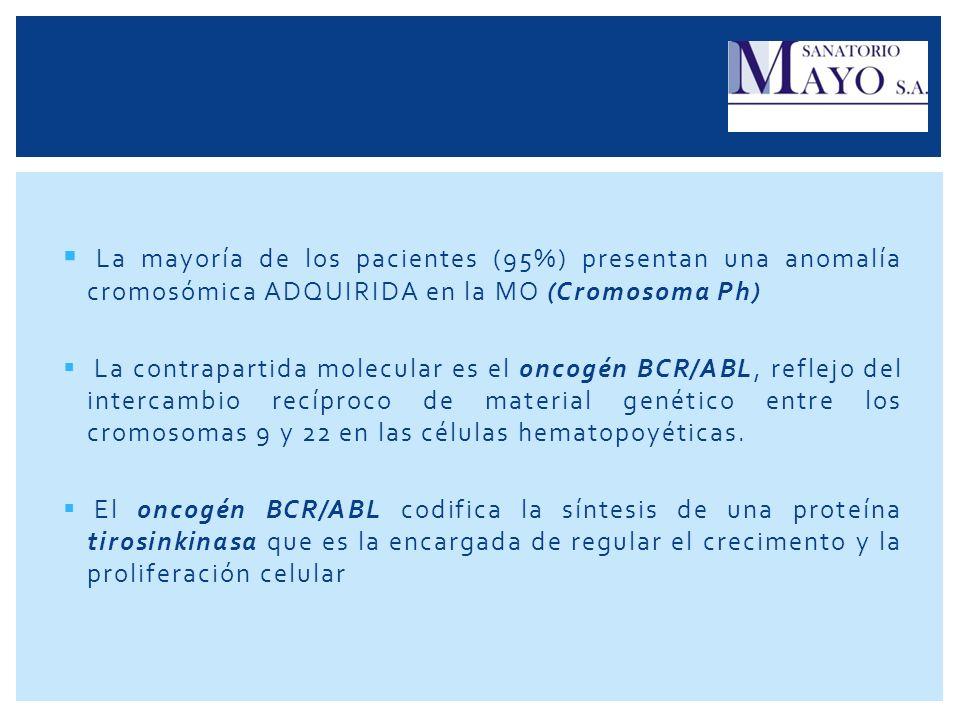 La mayoría de los pacientes (95%) presentan una anomalía cromosómica ADQUIRIDA en la MO (Cromosoma Ph) La contrapartida molecular es el oncogén BCR/AB