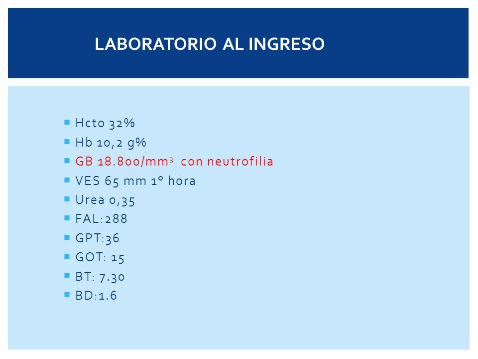 VES:7 Hb:15 Hto:45 PCR(-) GB: 9.000/mm 3 (68/2/0/28/2) HEMOGRAMA ACTUAL