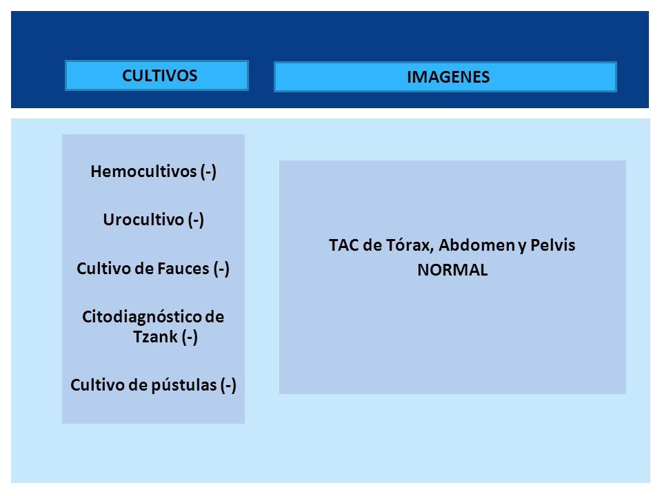 IMAGENES TAC de Tórax, Abdomen y Pelvis NORMAL CULTIVOS Hemocultivos (-) Urocultivo (-) Cultivo de Fauces (-) Citodiagnóstico de Tzank (-) Cultivo de