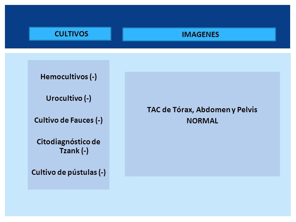 FAN (-) FR (-) C3-C4 Normales ANCA P y C(-) Anti ADN (-) Anti Ro (-) Anti LA (-) Anti RNP(-) Anti Sm (-) Anti Scl 70 (-) PCR++++ PERFIL SEROLOGICO HIV (-) VHB y VHC (-) CMV (-) VEB (-) VDRL (-) ASTO < 200 PERFIL INMUNOLÓGICO