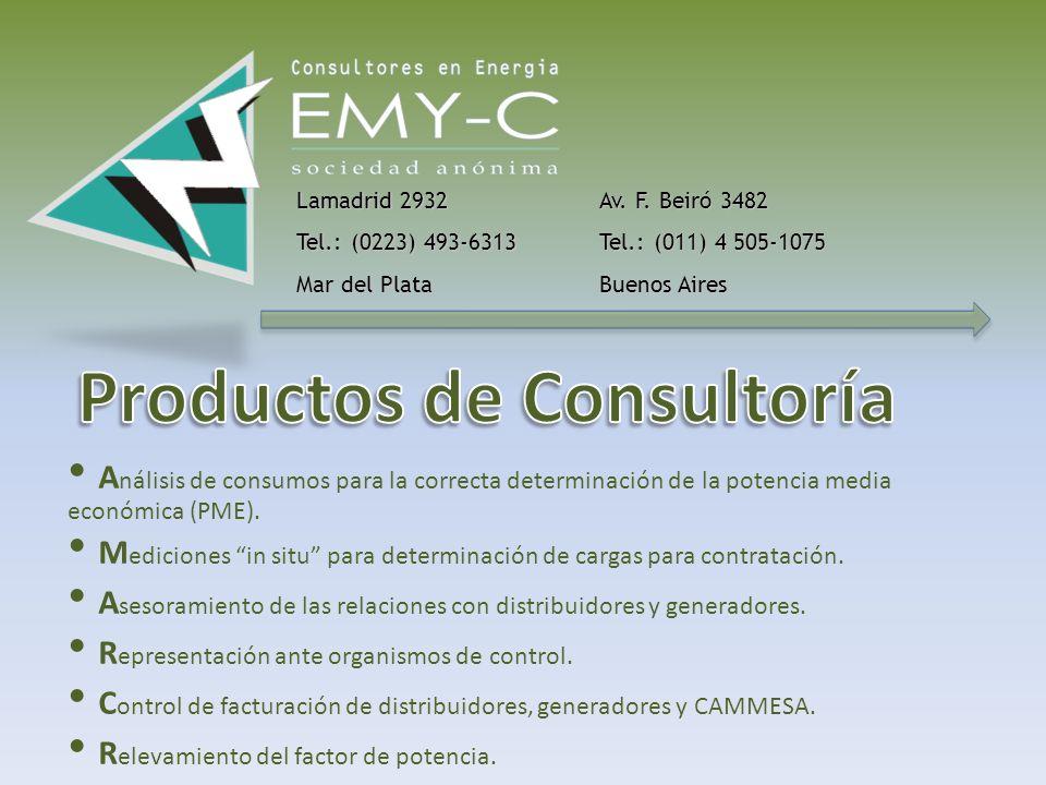 S er una empresa de consultoría líder a nivel nacional, con excelencia en sus productos y servicios, asesorando tanto a usuarios como a los diversos,