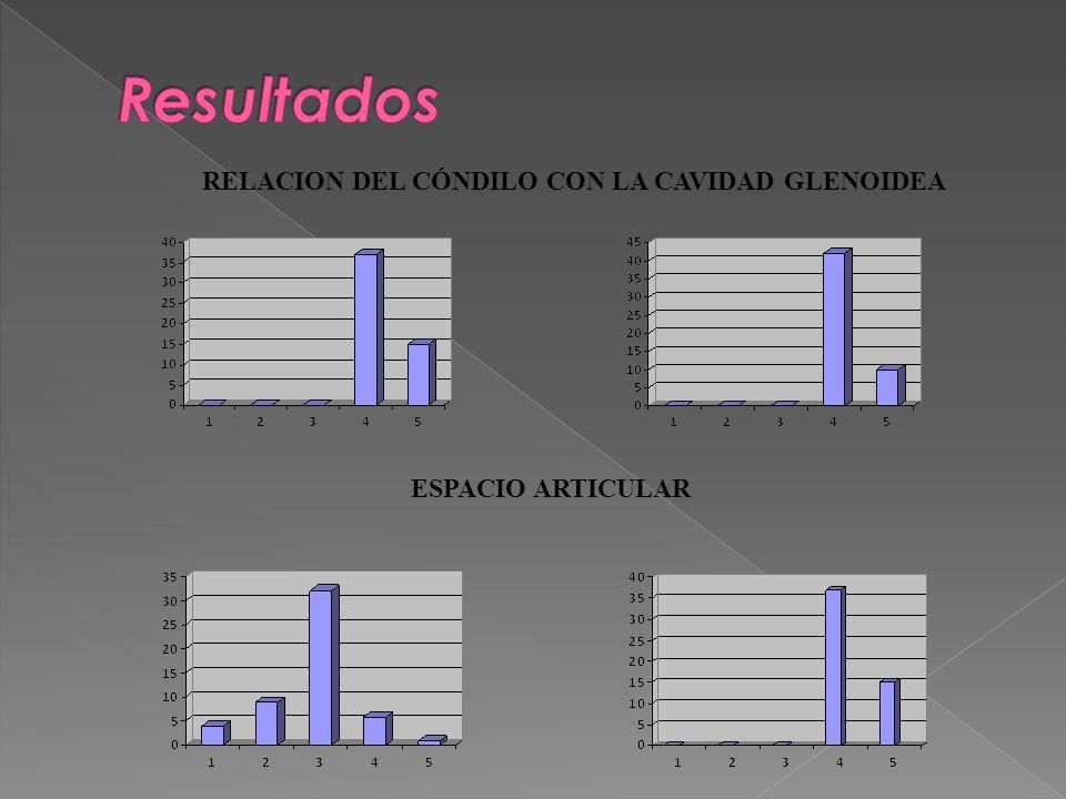 RELACION DEL CÓNDILO CON LA CAVIDAD GLENOIDEA ESPACIO ARTICULAR
