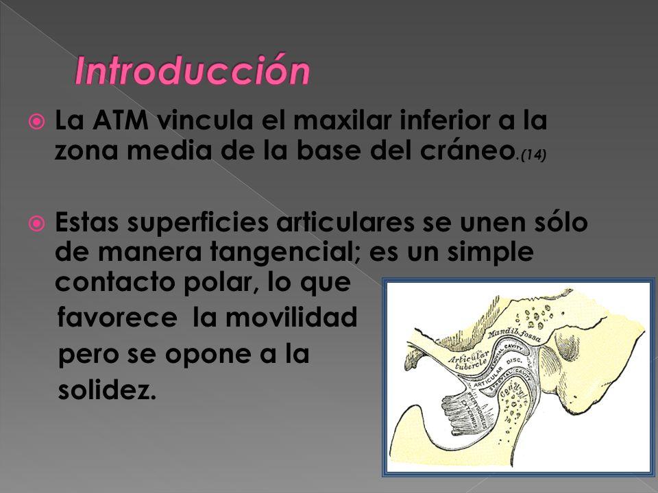 La ATM vincula el maxilar inferior a la zona media de la base del cráneo.(14) Estas superficies articulares se unen sólo de manera tangencial; es un s