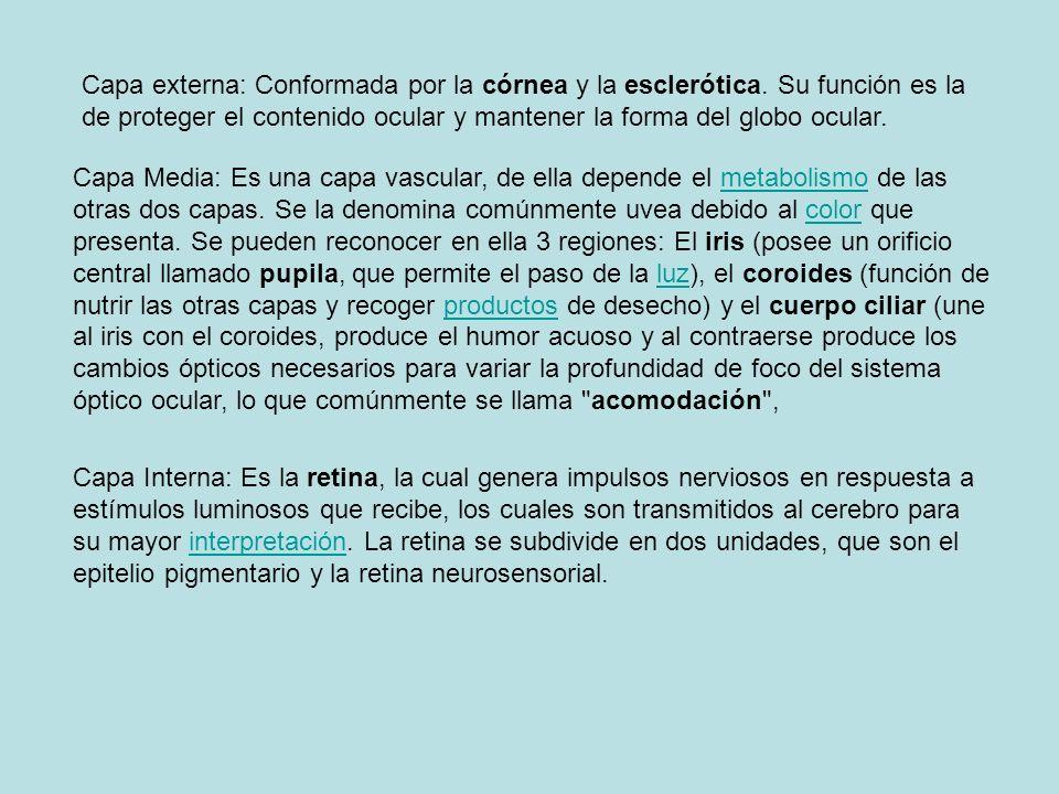 Estireno (Vinilbenceno) Irritación de ojos Neuritis óptica.