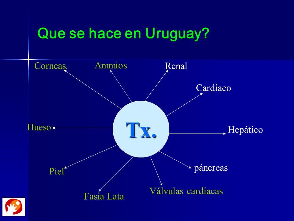 Que se hace en Uruguay? Tx. Renal Cardíaco Hepático páncreas Piel Corneas. Hueso Válvulas cardíacas Ammios Fasia Lata