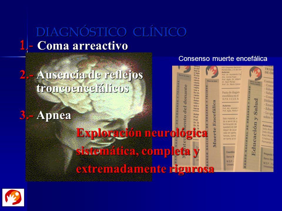 DIAGNÓSTICO CLÍNICO 1.- Coma arreactivo 2.- Ausencia de reflejos troncoencefálicos troncoencefálicos 3.- Apnea Exploración neurológica sistemática, co