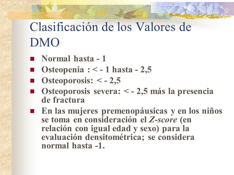 Sitios a medir Columna anteroposterior y fémur Antebrazo no dominante (cuando la columna o el femur no puedan medirse o interpretarse, en los pacientes con hiperparatiroidismo y en pacientes muy obesos) Fémur: cuello femoral o fémur proximal total