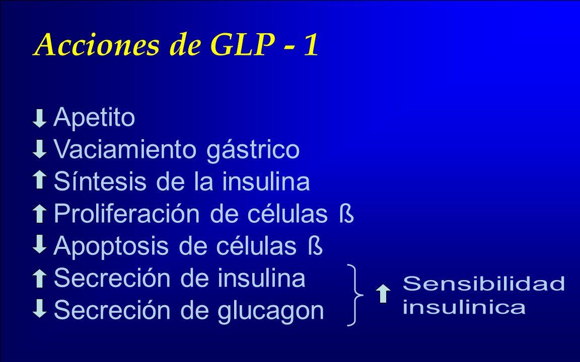Acciones de GLP - 1 Apetito Vaciamiento gástrico Síntesis de la insulina Proliferación de células ß Apoptosis de células ß Secreción de insulina Secre