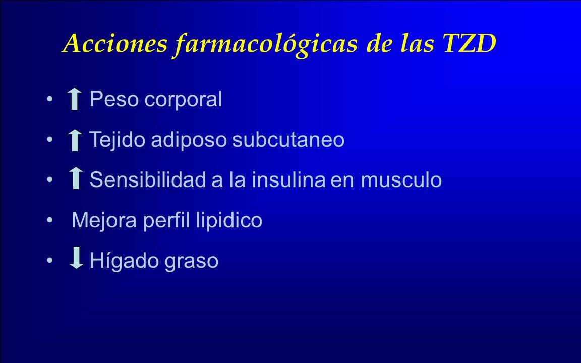 Acciones farmacológicas de las TZD Peso corporal Tejido adiposo subcutaneo Sensibilidad a la insulina en musculo Mejora perfil lipidico Hígado graso