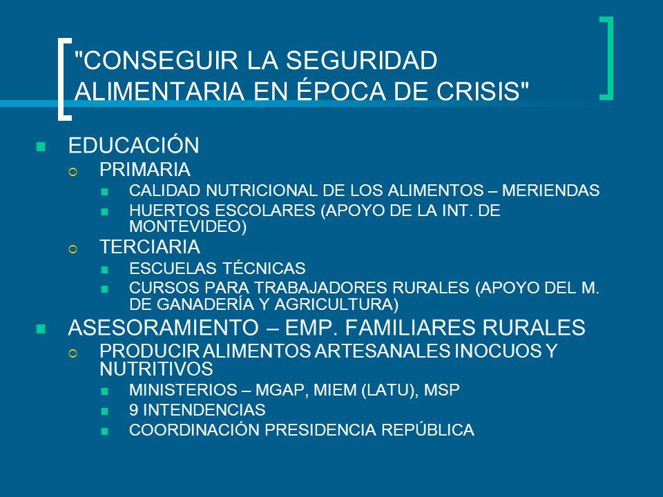 CONSEGUIR LA SEGURIDAD ALIMENTARIA EN ÉPOCA DE CRISIS EDUCACIÓN PRIMARIA CALIDAD NUTRICIONAL DE LOS ALIMENTOS – MERIENDAS HUERTOS ESCOLARES (APOYO DE LA INT.