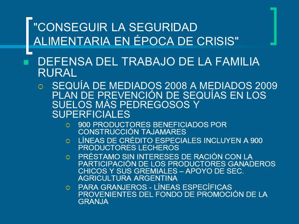 CONSEGUIR LA SEGURIDAD ALIMENTARIA EN ÉPOCA DE CRISIS DEFENSA DEL TRABAJO DE LA FAMILIA RURAL SEQUÍA DE MEDIADOS 2008 A MEDIADOS 2009 PLAN DE PREVENCIÓN DE SEQUÍAS EN LOS SUELOS MÁS PEDREGOSOS Y SUPERFICIALES 900 PRODUCTORES BENEFICIADOS POR CONSTRUCCIÓN TAJAMARES LÍNEAS DE CRÉDITO ESPECIALES INCLUYEN A 900 PRODUCTORES LECHEROS PRÉSTAMO SIN INTERESES DE RACIÓN CON LA PARTICIPACIÓN DE LOS PRODUCTORES GANADEROS CHICOS Y SUS GREMIALES – APOYO DE SEC.