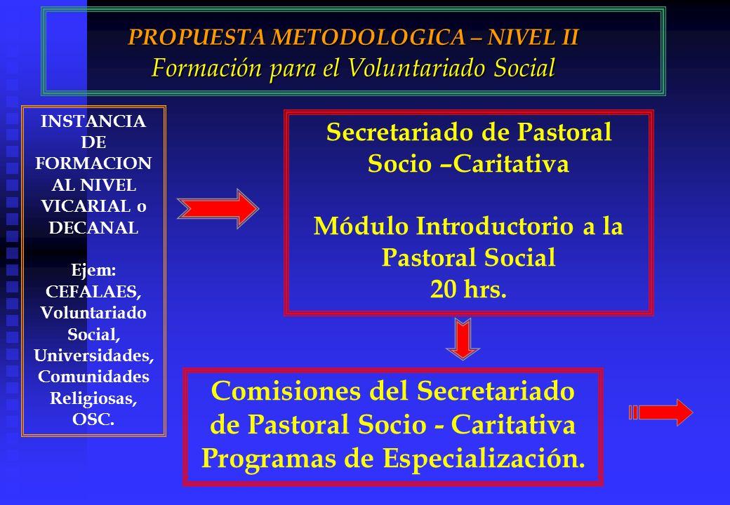 PROPUESTA METODOLOGICA – NIVEL II Formación para el Voluntariado Social INSTANCIA DE FORMACION AL NIVEL VICARIAL o DECANAL Ejem: CEFALAES, Voluntariado Social, Universidades, Comunidades Religiosas, OSC.