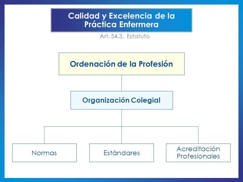 Estándares Acreditación Profesionales Normas Calidad y Excelencia de la Práctica Enfermera Ordenación de la Profesión Organización Colegial Art. 54.3.