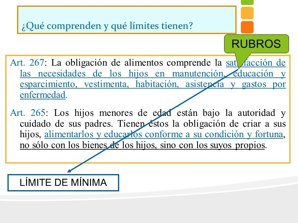 ¿Qué comprenden y qué límites tienen? Art. 267: La obligación de alimentos comprende la satisfacción de las necesidades de los hijos en manutención, e