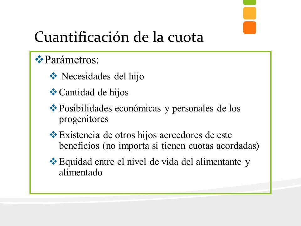 Cuantificación de la cuota Parámetros: Necesidades del hijo Cantidad de hijos Posibilidades económicas y personales de los progenitores Existencia de
