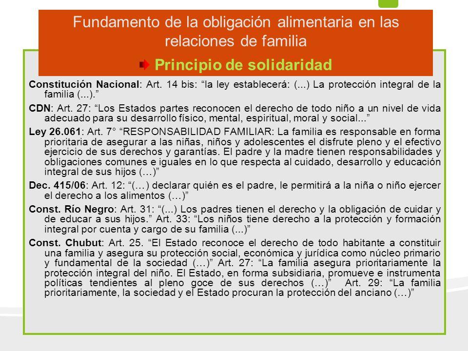 Constitución Nacional: Art. 14 bis: la ley establecerá: (...) La protección integral de la familia (...). CDN: Art. 27: Los Estados partes reconocen e