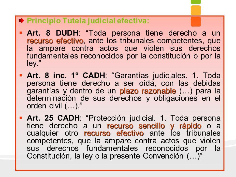 Principio Tutela judicial efectiva: recurso efectivo Art. 8 DUDH: Toda persona tiene derecho a un recurso efectivo, ante los tribunales competentes, q