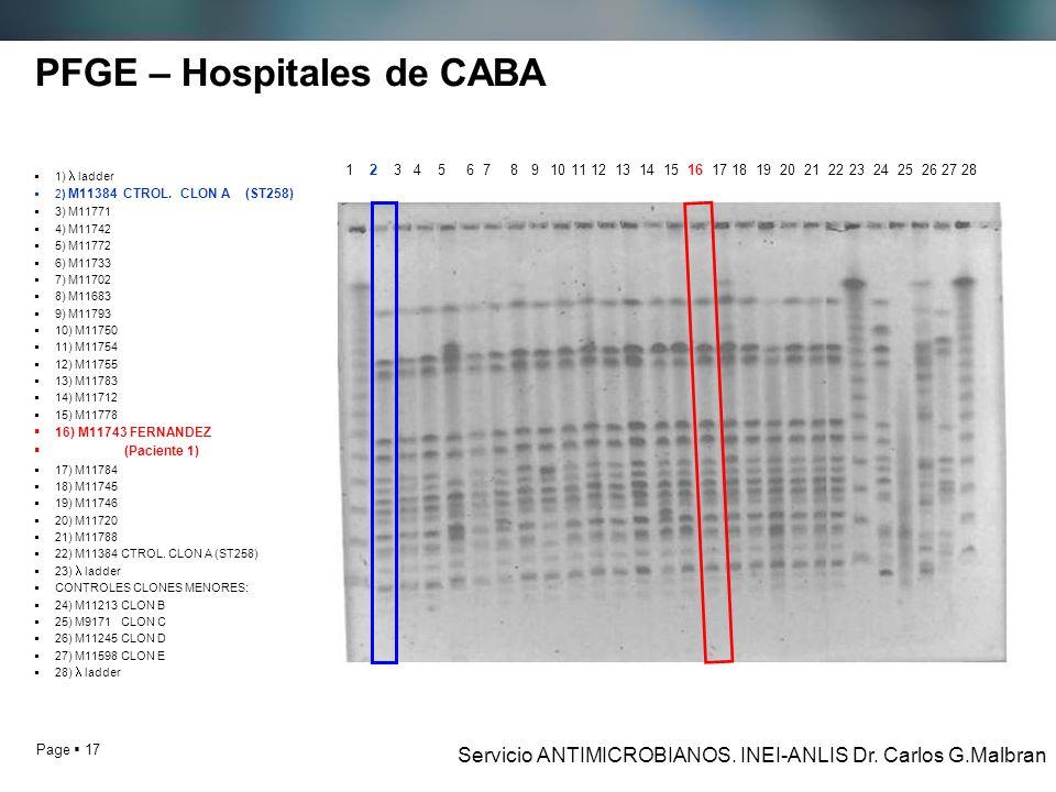 Page 17 PFGE – Hospitales de CABA 1) ladder 2) M11384 CTROL.