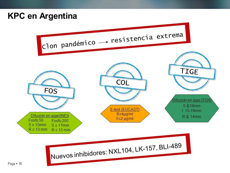Page 18 KPC en Argentina Clon pandémico resistencia extrema FOS COL TIGE Nuevos inhibidores: NXL104, LK-157, BLI-489 Difusión en agar (FDA) S 19mm I 15-18mm R 14mm Fosfo 200 S 17mm R 15 mm Difusión en agar(INEI) Fosfo 50 S 15mm R 13 mm E-test (EUCAST) R4μg/ml S2 μg/ml