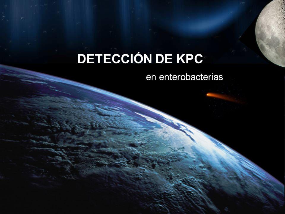 DETECCIÓN DE KPC en enterobacterias
