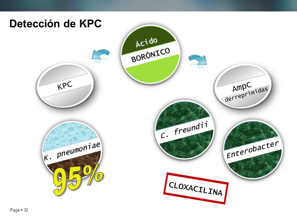 Page 32 Detección de KPCBORÓNICO Ácido K. pneumoniae C. freundii Enterobacter CLOXACILINA