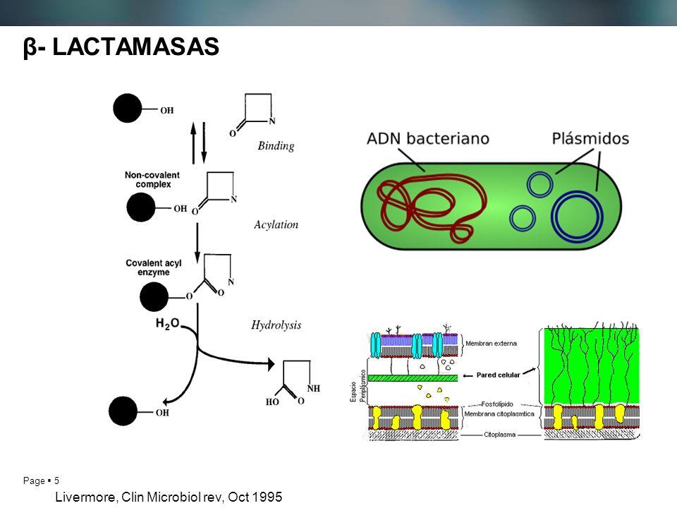 Page 5 β- LACTAMASAS Livermore, Clin Microbiol rev, Oct 1995