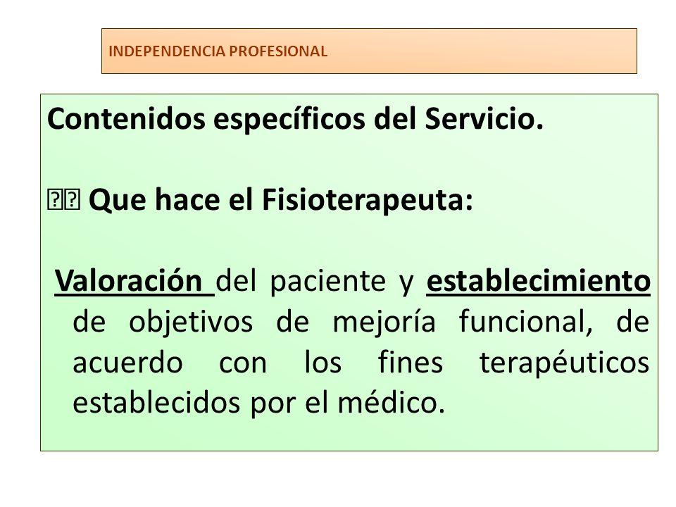 INDEPENDENCIA PROFESIONAL Contenidos específicos del Servicio. Que hace el Fisioterapeuta: Valoración del paciente y establecimiento de objetivos de m