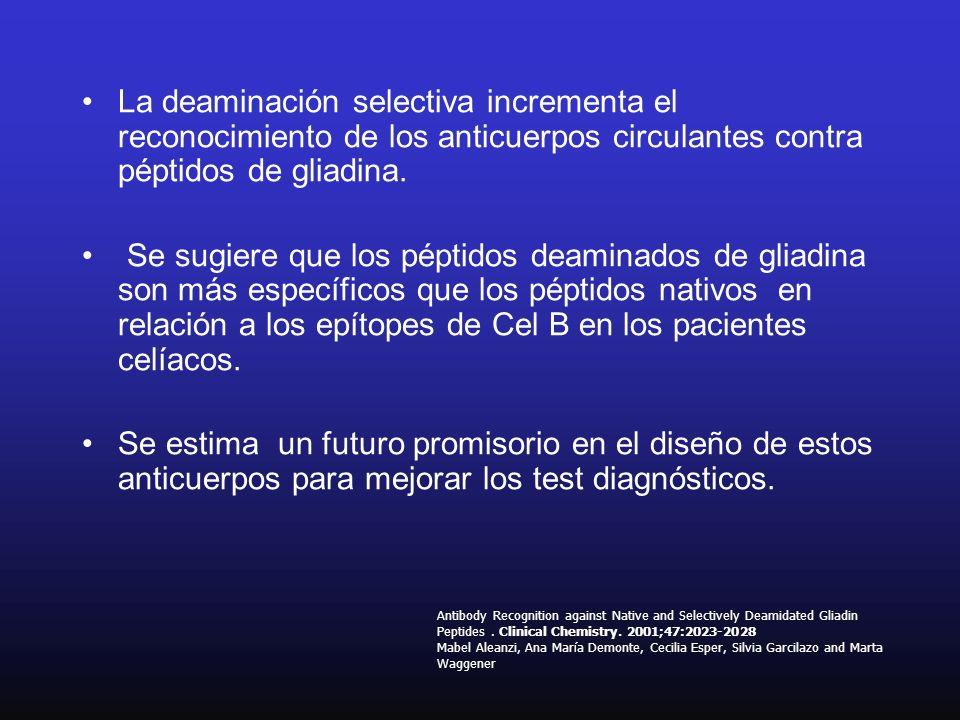 La deaminación selectiva incrementa el reconocimiento de los anticuerpos circulantes contra péptidos de gliadina. Se sugiere que los péptidos deaminad