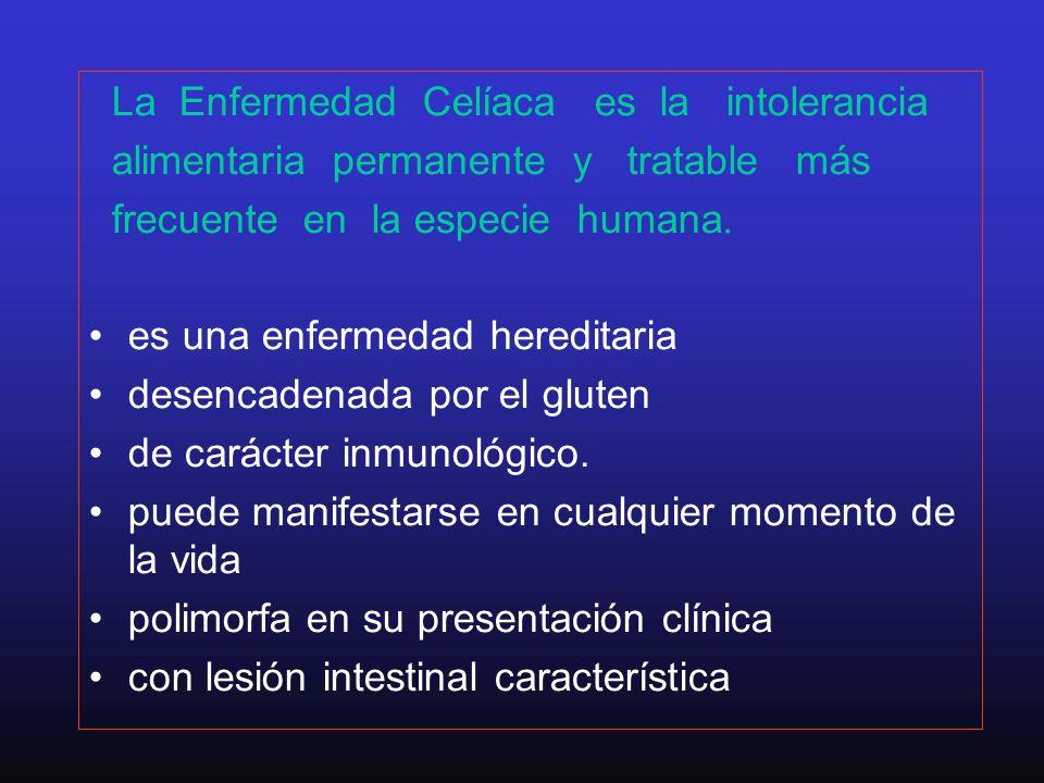 La Enfermedad Celíaca es la intolerancia alimentaria permanente y tratable más frecuente en la especie humana. es una enfermedad hereditaria desencade