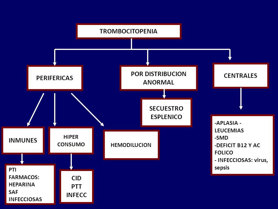 TROMBOCITOPENIA PERIFERICAS POR DISTRIBUCION ANORMAL CENTRALES INMUNES PTI FARMACOS: HEPARINA SAF INFECCIOSAS CID PTT INFECC HIPER CONSUMO HEMODILUCION SECUESTRO ESPLENICO -APLASIA - LEUCEMIAS -SMD -DEFICIT B12 Y AC FOLICO - INFECCIOSAS: virus, sepsis