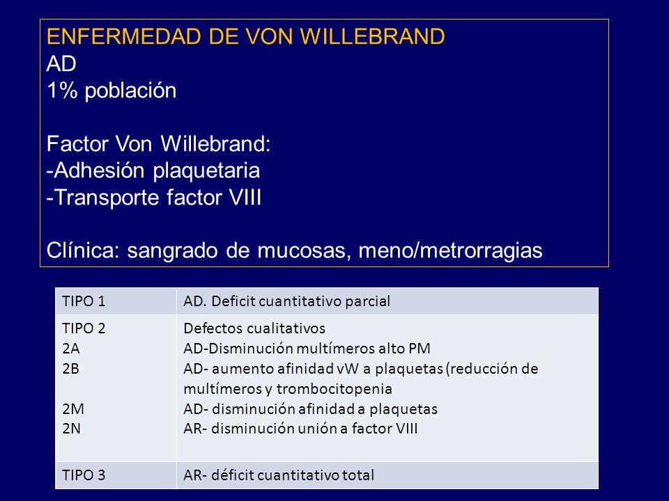 ENFERMEDAD DE VON WILLEBRAND AD 1% población Factor Von Willebrand: -Adhesión plaquetaria -Transporte factor VIII Clínica: sangrado de mucosas, meno/metrorragias TIPO 1AD.