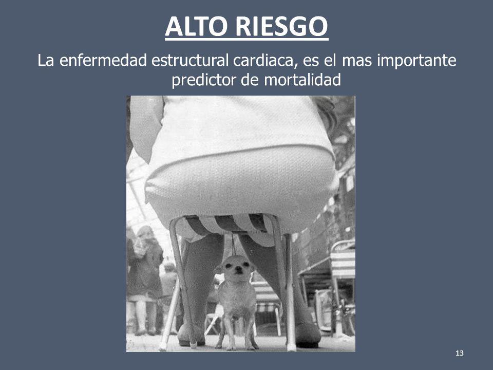 13 ALTO RIESGO La enfermedad estructural cardiaca, es el mas importante predictor de mortalidad