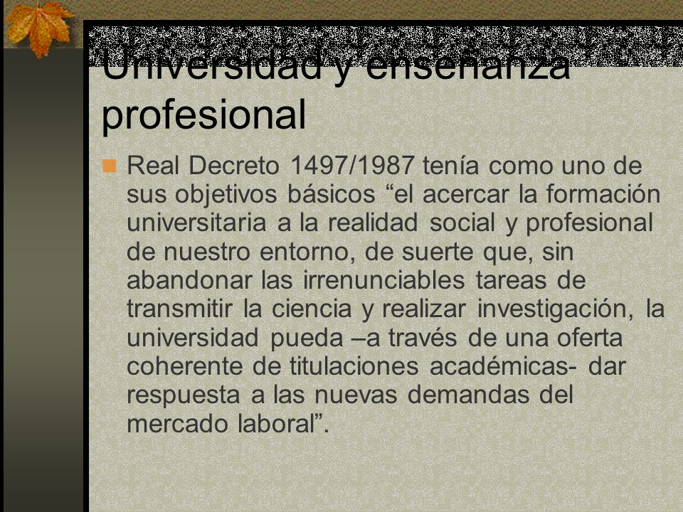 Universidad y enseñanza profesional Real Decreto 1497/1987 tenía como uno de sus objetivos básicos el acercar la formación universitaria a la realidad