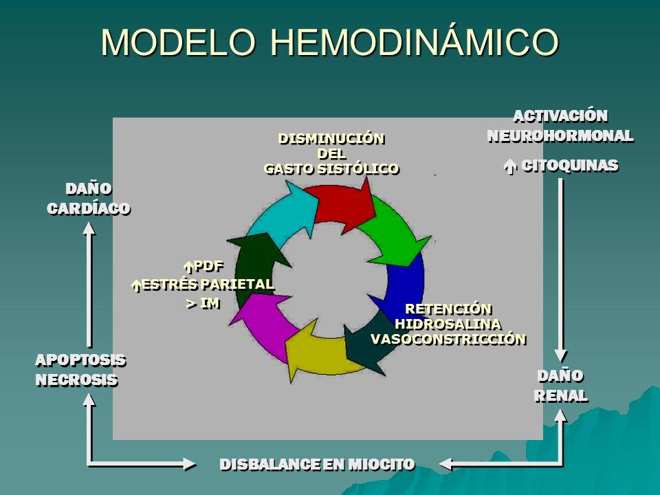 DISMINUCIÓN DEL GASTO SISTÓLICO DISMINUCIÓN DEL GASTO SISTÓLICO RETENCIÓN HIDROSALINA VASOCONSTRICCIÓN RETENCIÓN HIDROSALINA VASOCONSTRICCIÓN PDF ESTRÉS PARIETAL > IM PDF ESTRÉS PARIETAL > IM MODELO HEMODINÁMICO ACTIVACIÓN NEUROHORMONAL CITOQUINAS ACTIVACIÓN NEUROHORMONAL CITOQUINAS DAÑO RENAL DISBALANCE EN MIOCITO APOPTOSIS NECROSIS DAÑO CARDÍACO