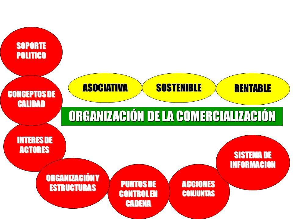 Requisitos Básicos INTERES DE ACTORES ACCIONES CONJUNTAS PUNTOS DE CONTROL EN CADENA SISTEMA DE INFORMACION ORGANIZACIÓN Y ESTRUCTURAS SOPORTE POLITIC