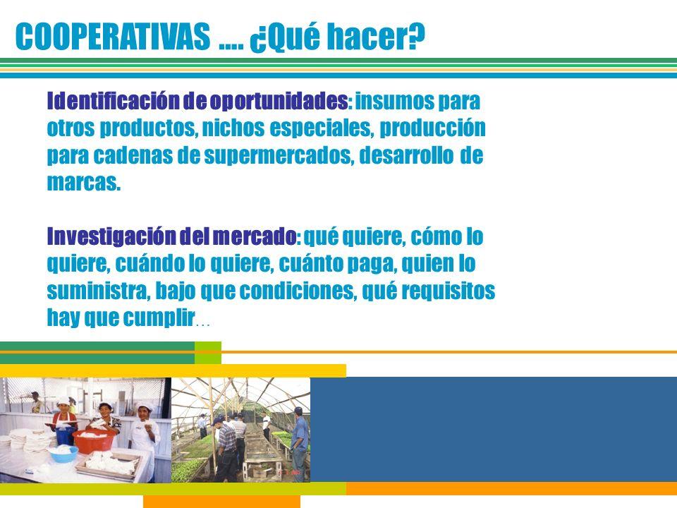 COOPERATIVAS …. ¿Qué hacer? Identificación de oportunidades: insumos para otros productos, nichos especiales, producción para cadenas de supermercados