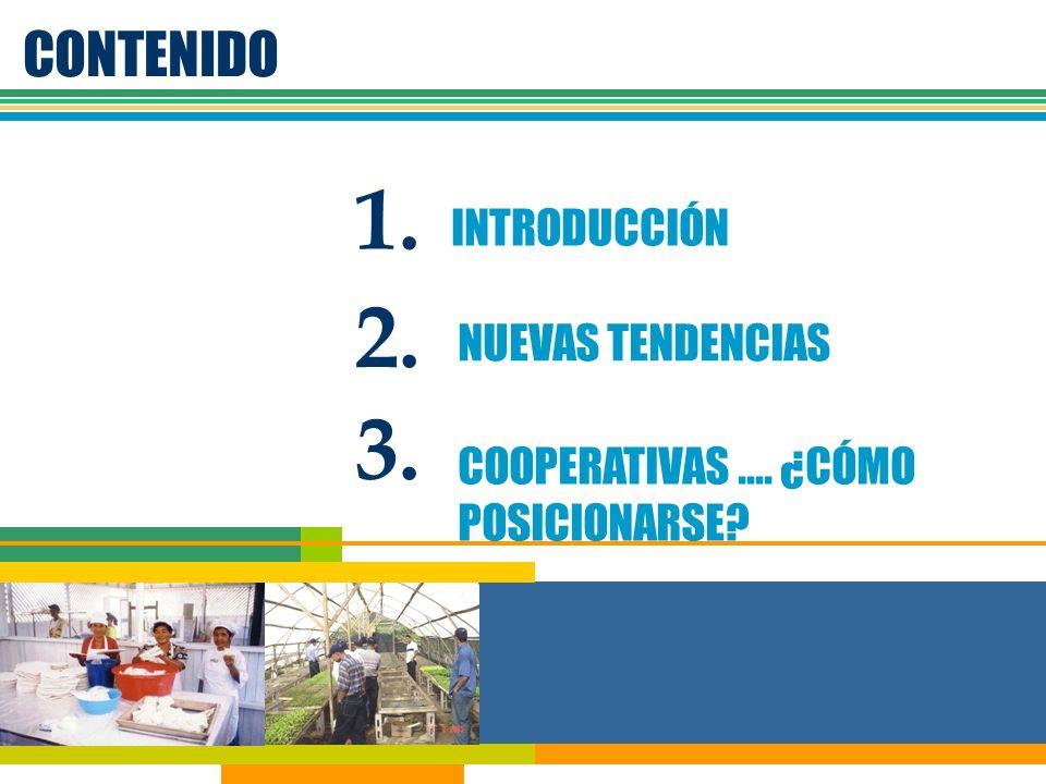 Requisitos Básicos INTERES DE ACTORES ACCIONES CONJUNTAS PUNTOS DE CONTROL EN CADENA SISTEMA DE INFORMACION ORGANIZACIÓN Y ESTRUCTURAS SOPORTE POLITICO CONCEPTOS DE CALIDAD RENTABLE SOSTENIBLEASOCIATIVA ORGANIZACIÓN DE LA COMERCIALIZACIÓN