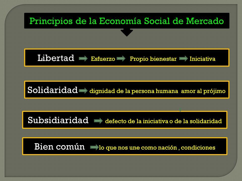 Principios de la Economía Social de Mercado Solidaridad dignidad de la persona humana amor al prójimo Subsidiaridad defecto de la iniciativa o de la solidaridad Libertad Esfuerzo Propio bienestar Iniciativa Bien común lo que nos une como nación, condiciones
