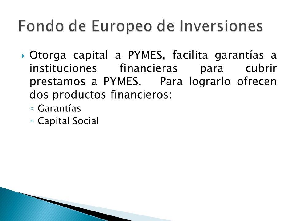 Otorga capital a PYMES, facilita garantías a instituciones financieras para cubrir prestamos a PYMES.