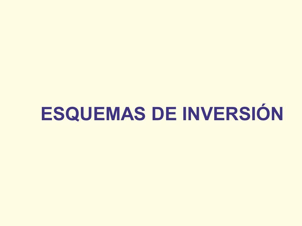ESQUEMAS DE INVERSIÓN