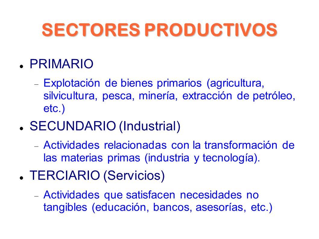 SECTORES PRODUCTIVOS PRIMARIO Explotación de bienes primarios (agricultura, silvicultura, pesca, minería, extracción de petróleo, etc.) SECUNDARIO (Industrial) Actividades relacionadas con la transformación de las materias primas (industria y tecnología).