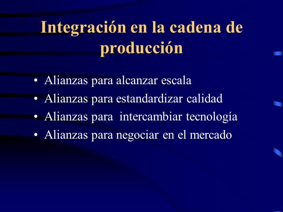 Integración en la cadena de producción Alianzas para alcanzar escala Alianzas para estandardizar calidad Alianzas para intercambiar tecnología Alianza