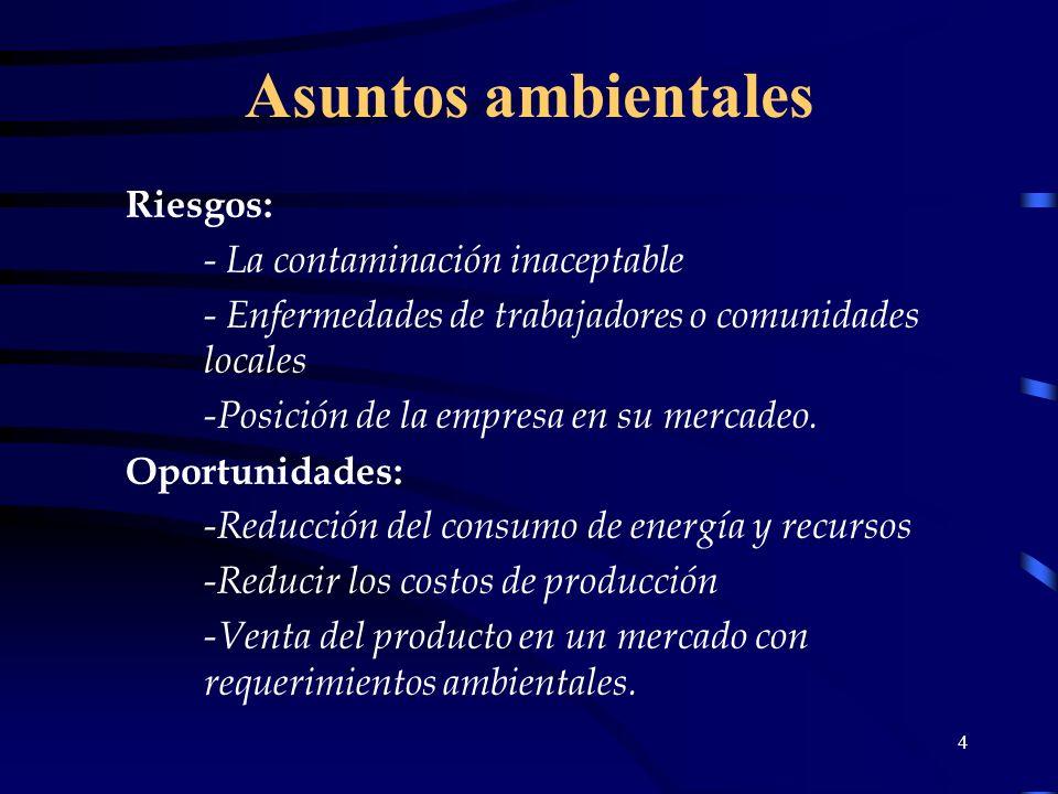 4 Asuntos ambientales Riesgos: - La contaminación inaceptable - Enfermedades de trabajadores o comunidades locales -Posición de la empresa en su merca