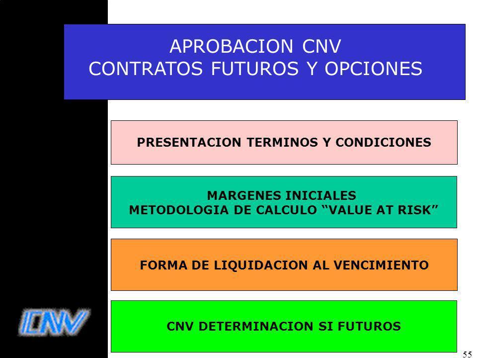 55 APROBACION CNV CONTRATOS FUTUROS Y OPCIONES FORMA DE LIQUIDACION AL VENCIMIENTO PRESENTACION TERMINOS Y CONDICIONES CNV DETERMINACION SI FUTUROS MARGENES INICIALES METODOLOGIA DE CALCULO VALUE AT RISK