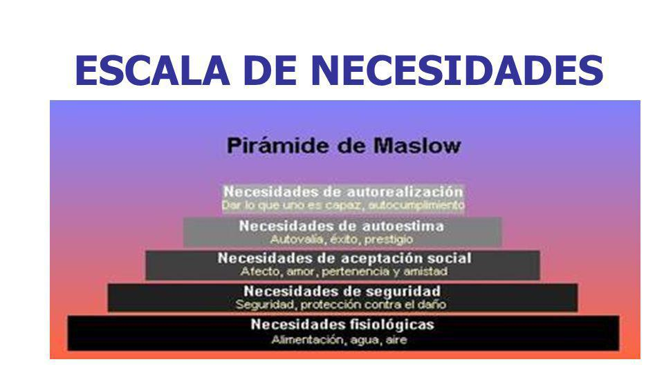 ESCALA DE NECESIDADES