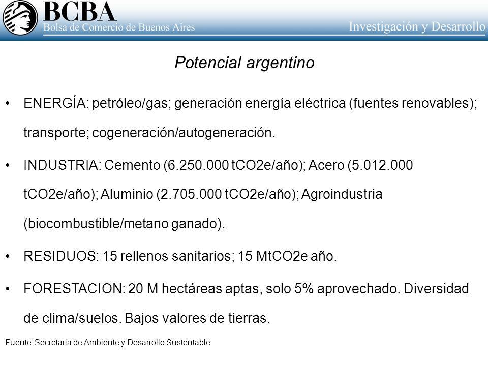 Potencial argentino ENERGÍA: petróleo/gas; generación energía eléctrica (fuentes renovables); transporte; cogeneración/autogeneración. INDUSTRIA: Ceme
