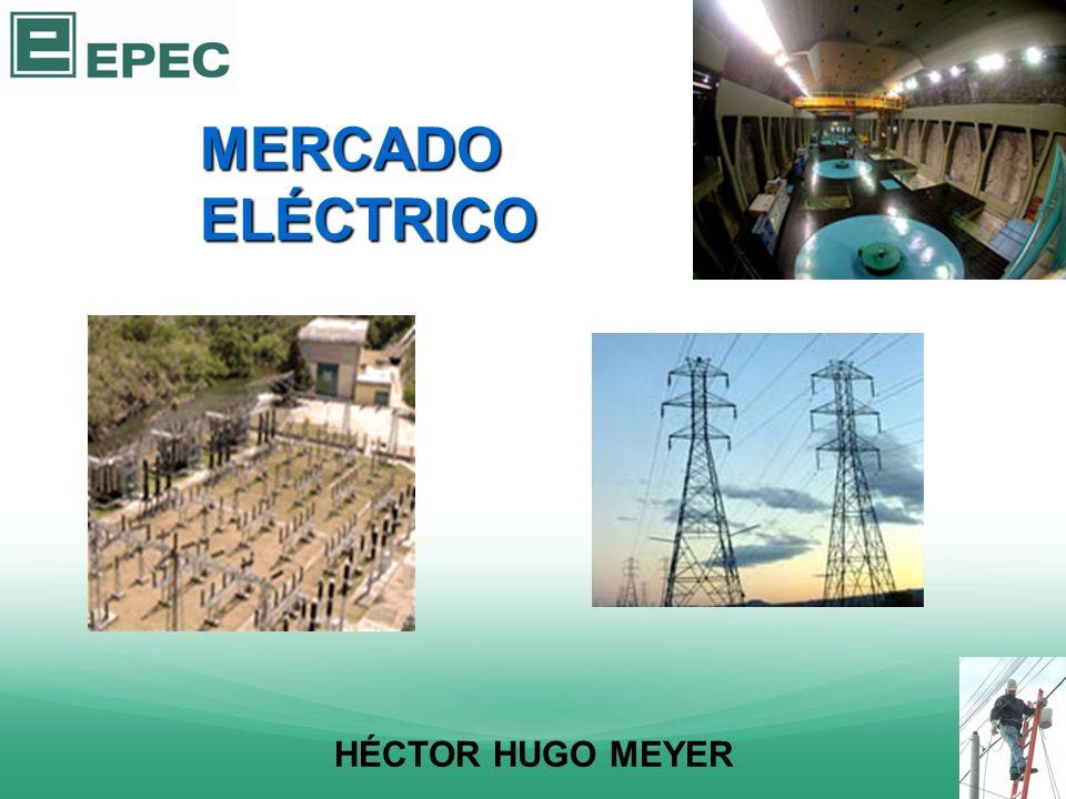 MERCADO ELÉCTRICO HÉCTOR HUGO MEYER