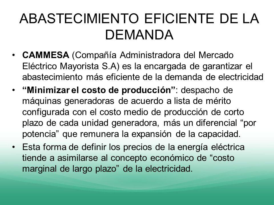 ABASTECIMIENTO EFICIENTE DE LA DEMANDA CAMMESA (Compañía Administradora del Mercado Eléctrico Mayorista S.A) es la encargada de garantizar el abasteci