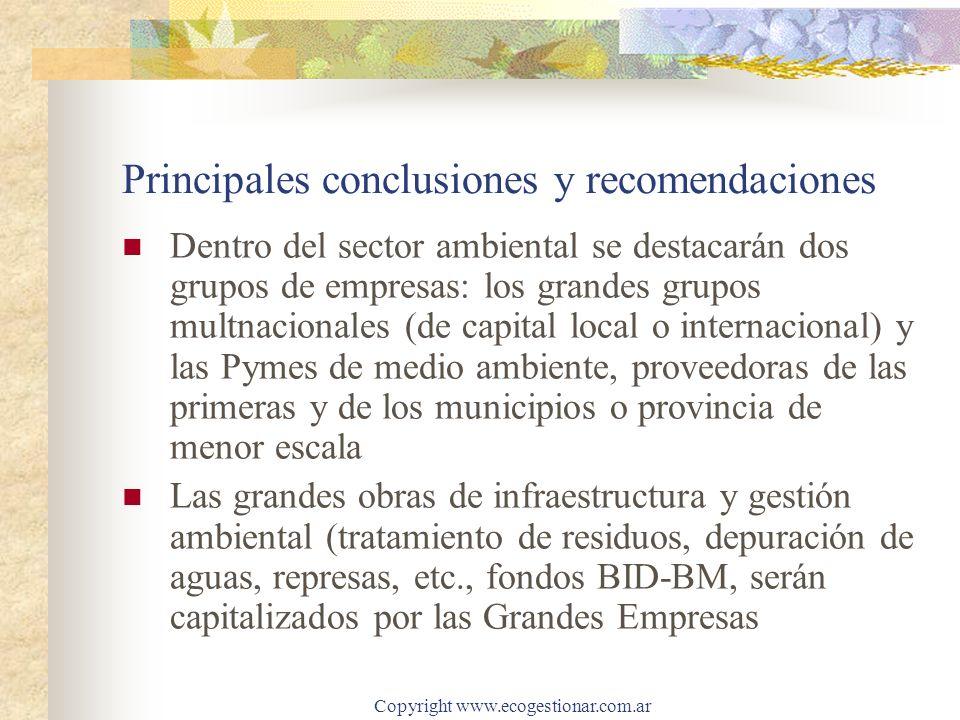 Copyright www.ecogestionar.com.ar Principales conclusiones y recomendaciones Dentro del sector ambiental se destacarán dos grupos de empresas: los gra