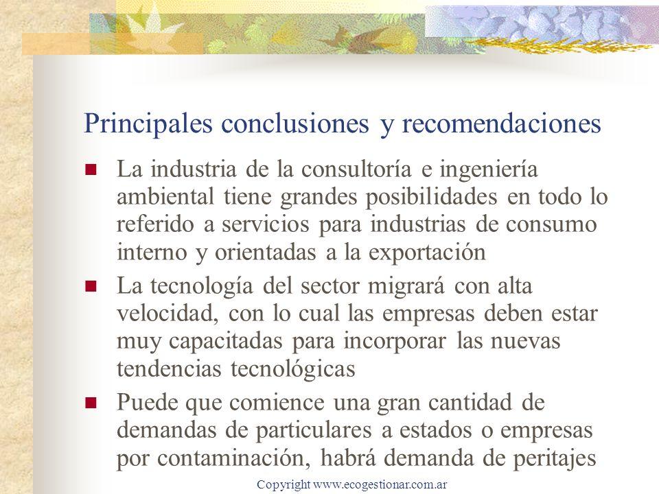 Copyright www.ecogestionar.com.ar Principales conclusiones y recomendaciones La industria de la consultoría e ingeniería ambiental tiene grandes posib